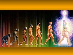 Zet bewust je cellen in voor je eigen evolutie! - Saskia Bosman